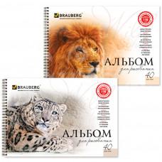 Альбом для рисования Brauberg А4 40 листов Кошки Картон 102831