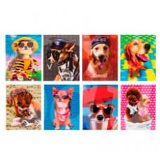 Блокнот Brauberg 40 листов А7 Собаки 3D обложка 128084